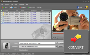 Step 4 - Start Conversion. 3gp converter, 3gp video converter, avi to 3gp, convert 3gp, convert video to 3gp, mp4 to 3gp, 3gp software, wmv to 3gp, convert dvd to 3gp, dvd to 3gp, dvd to 3gp converter.