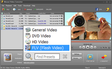 Choose FLV video format
