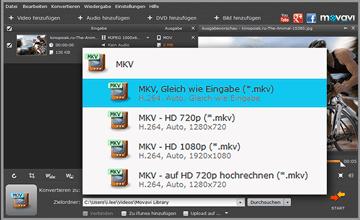 Movavi DVD zu MKV Converter