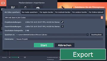 Die Anleitung exportieren oder sie für das Internet optimieren