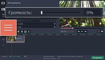 как убрать звук из видео онлайн - фото 5