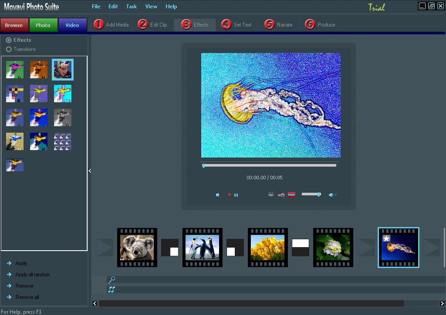 Movavi Photo Suite Screenshot