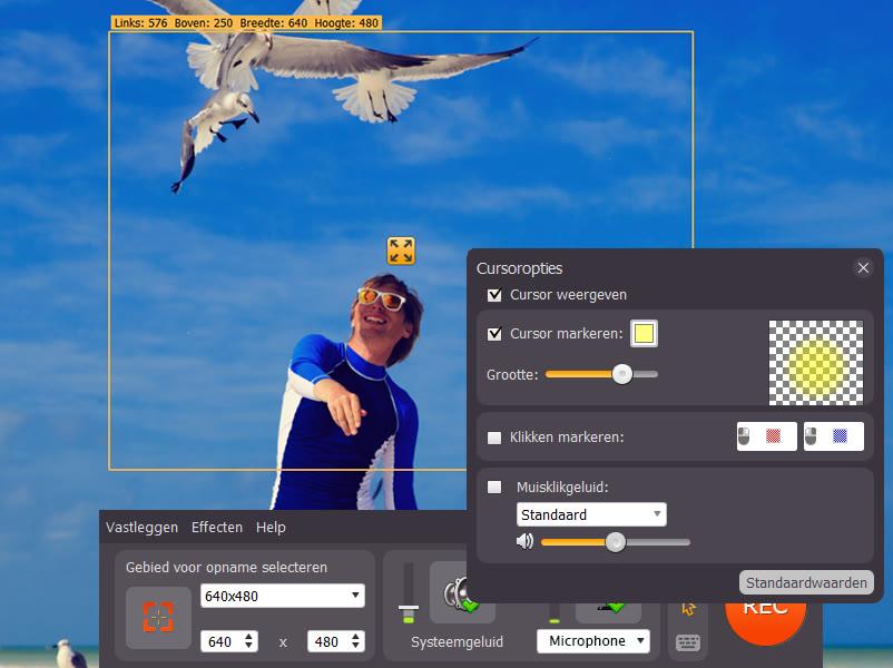 Screenrecorder neem makkelijk video op met movavi - Optimaliseer de studio ...
