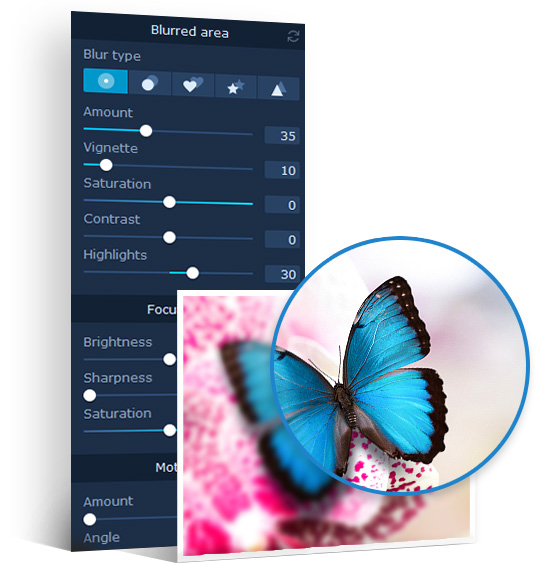Blur Images with Movavi Photo Focus | Photo Blur Editor