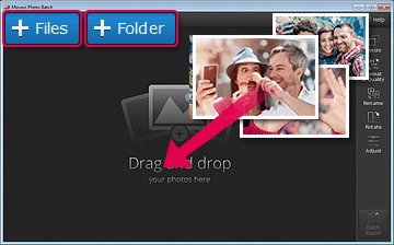 Step 2: Add Files to the Photo Optimizer