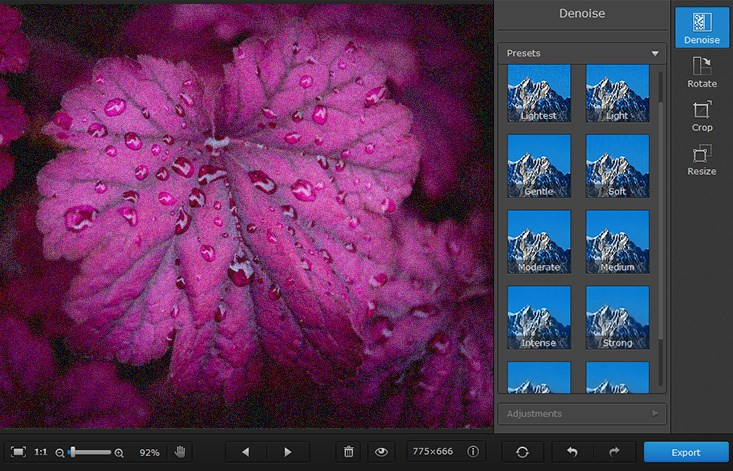 Noise Reduction Software for Mac | Make Photos Noiseless