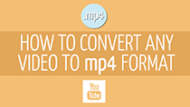 How to convert videos to the MP4 format
